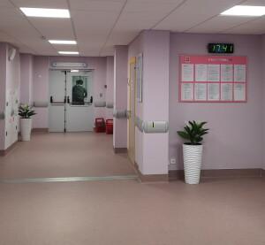 корид